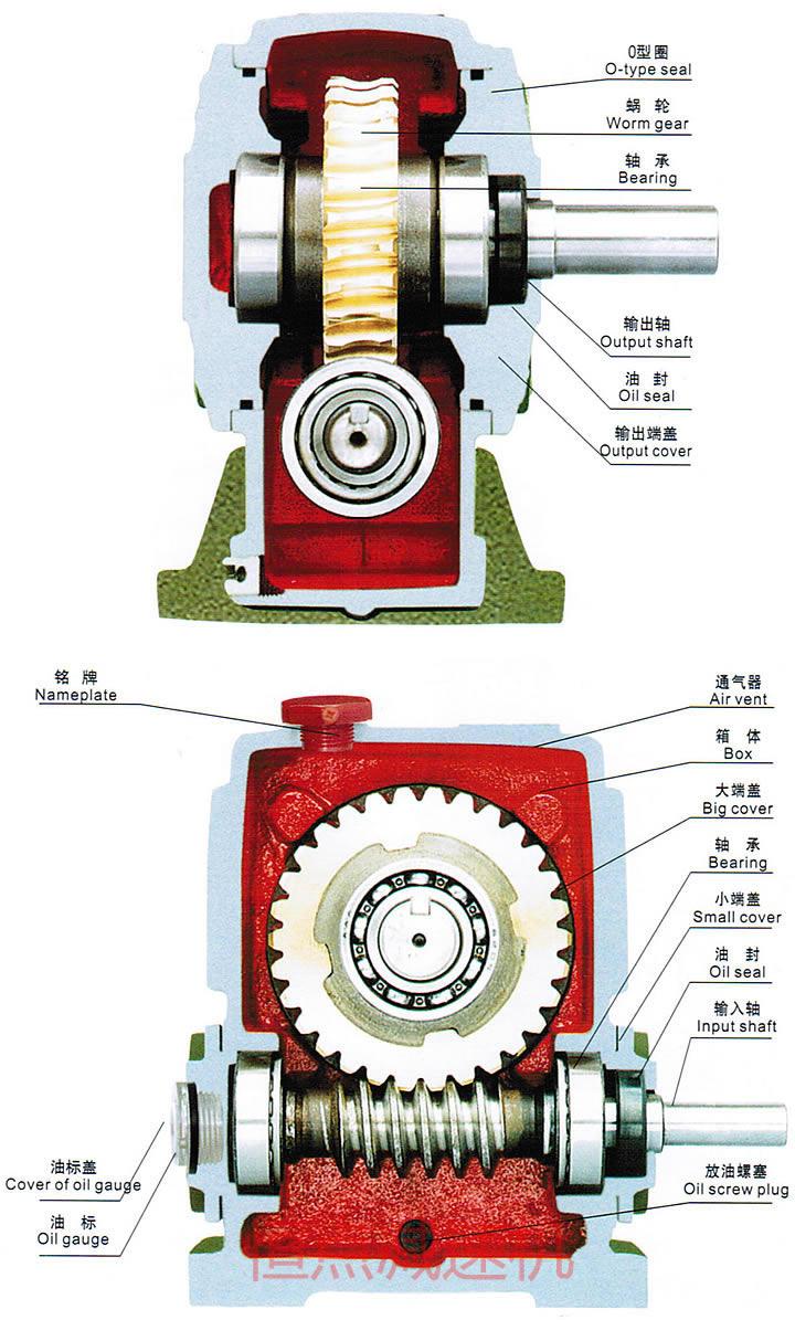 结构_wp系列蜗轮蜗杆减速机内部结构图